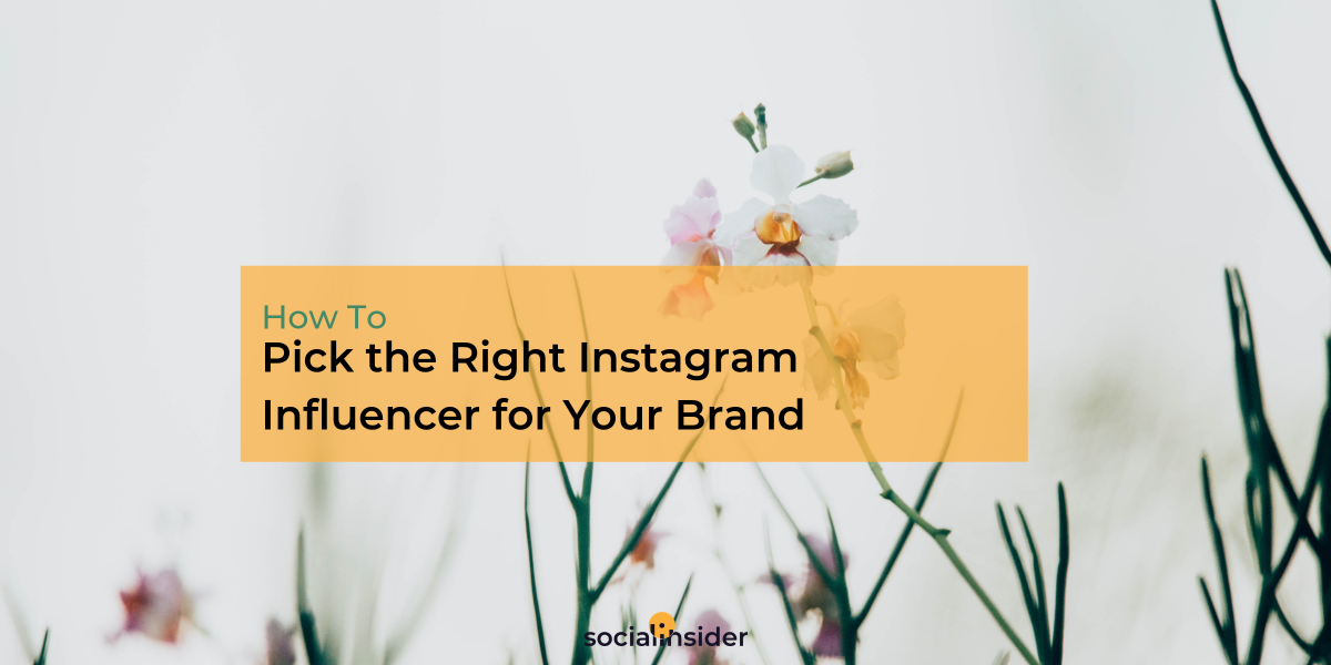 Picking the Right Instagram Influencer for Your Brand